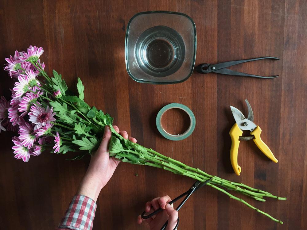 Cuidados de las flores